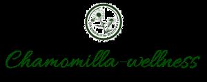 東京でシータヒーリング・アクセスバーズを学ぶ ヒーリングサロンのカモミラ