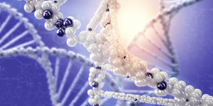 シータヒーリングセミナー:基礎DNA