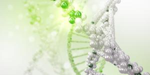 シータヒーリングセミナー:応用DNA